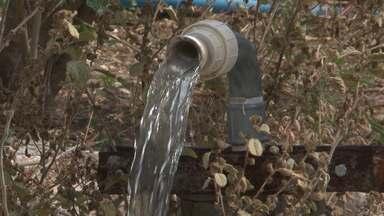 Criadores e produtores de Juazeiro contam com hidroestinia para amenizar a seca - Na técnica centenária, as pessoas com sensibilidade utilizam pequenas varetas para descobrir existência de água no subsolo.