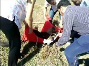 Tamanduá-bandeira ferido é resgatado em rodovia de Porangaba - Um tamanduá-bandeira foi resgatado na manhã desta sexta-feira (1º), em Porangaba (SP), depois de ter sido atropelado. O resgate foi feito por voluntários. Um casal de veterinários que participou do socorro sedou o animal para o transporte até o hospital especializado da Universidade Estadual Paulista (Unesp), em Botucatu (SP).