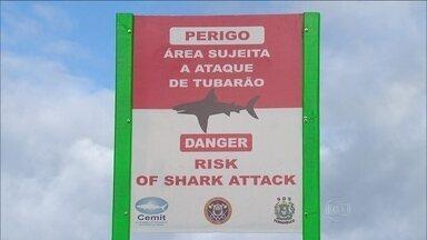 Banhista que insistir em nadar em áreas de risco pode ser levado para delegacia - Uma nova medida chegou nas praias de Pernambuco: Quem insistir em nadar nas áreas consideradas de riscos, pode acabar na delegacia.