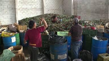 Prefeitura de Maringá promete mais investimentos nas cooperativas de recicláveis - Empresa que será contratada pelo município deve investir 2,5 milhões de reais nas cooperativas