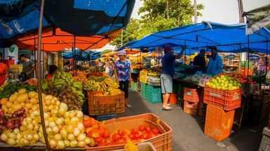 São Benedito é lugar de clima frio e solo fértil voltado para produção de frutas - Orgulho de se ver.