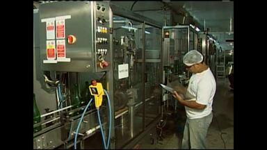 Vinícola localizada no norte da BA anuncia ampliação - Medida foi tomada para dar início à produção de suco integral de uva.