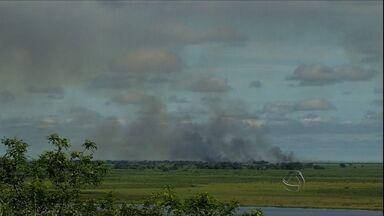 Mesmo com tempo seco, Corumbá tem número menor de focos de queimadas - Em 2014, foram registrados 397 incêndios.