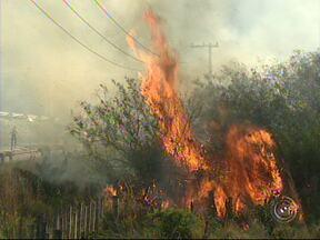 Defesa Civil registra pelo menos quinze focos de incêndio em Cabreúva - No final de semana, pelo menos 15 focos de incêndio foram registrados em Cabreúva. Chamas foram combatidas por agentes da Defesa Civil do município.