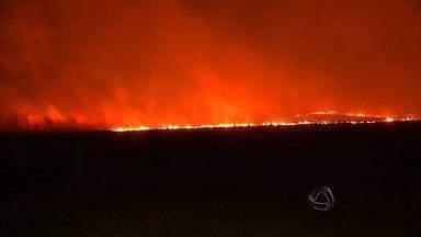 Mato Grosso lidera a lista de incêndios florestais no país - Mato Grosso lidera a lista de incêndios florestais no país