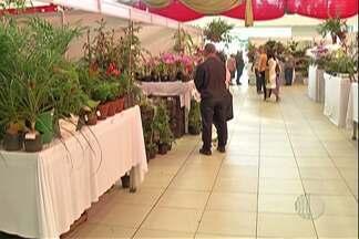 Começa a 42ª edição da Exposição de Orquídeas e Plantas Ornamentais em Poá - Nesta sexta-feira (5) a atração é o show musical da banda Raiz Coral.