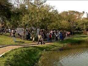 Sábado teve ação ambiental em Caxias do Sul, RS - Cerca de 2.000 pessoas participaram das atividades