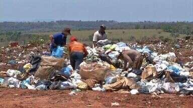 Empresa é notificada sobre situação de catadores de lixo em Rondonópolis (MT) - Empresa é notificada sobre situação de catadores de lixo em Rondonópolis.