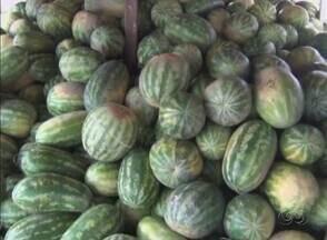 Infraestutura afeta venda de safra de melancia no AM, diz produtores - Comercialização do fruto foi iniciada, mas falta de transporte afeta escoamento da produção.