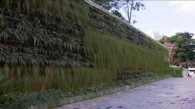 Jardim vertical é opção para aproveitar os espaços - O jardim vertical é uma boa opção para aproveitar os espaços e ter um jardim em casa. Os prédios comerciais de São Paulo também estão adotando a prática ao integrar construção civil com áreas verdes.