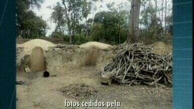 Carvoaria clandestina é fechada em Linhares, ES - Foram encontradas matas Atlântica e nativa sendo queimadas sem autorização.Denúncia anônima levou a polícia até o local.