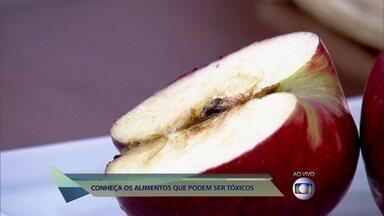 Conheça os alimentos e plantas que podem ser tóxicos - Dr. Fernando lista alguns e explica