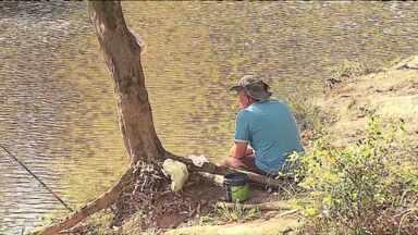 Começa a piracema época em que é proibido pescar peixes nativos - A preocupação é garantir a reprodução dos peixes.