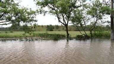 Lagoa transborda e invade pista da ES-010 na Serra, ES - Lagoa Maringá transbordou por conta da forte chuva desta quinta-feira (30).Segundo a prefeitura, às 10h o trecho Jacaraípe-Vitória estava alagado.