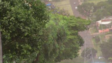 Simepar registra maior rajada de vento do ano - Ventos chegaram a 91 quilômetros por hora