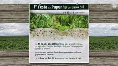 Confira os eventos do setor que acontecem na semana por todo o Brasil - Fique ligado na agenda completa das festas, cursos e exposições.
