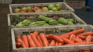 Programa da Ceasa ajuda famílias carentes com o reaproveitamento de alimentos - Mais de cem toneladas de furtas, legumes e verduras são doadas mensalmente.