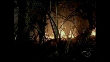 Incêndio destrói 15% de vegetação da Reserva de Comboios, no ES - Área ambiental fica em Regência, litoral de Linhares. Fogo já foi controlado e não houve feridos.