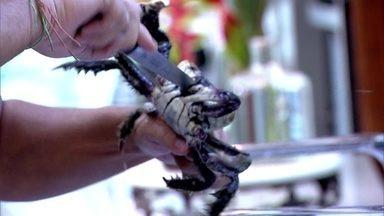 André Marques limpa caranguejo ao vivo no Mais Você - Ele e Cissa provam a receita de Jimmy