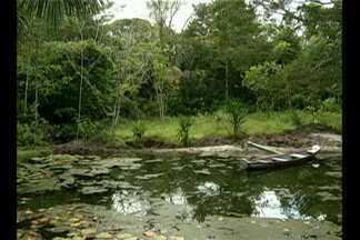 Em Tracuateua, sítio proporciona contato com a natureza - Local é um recanto natural onde a preservação do meio ambiente caminha lado a lado com a educação.