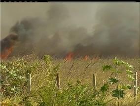 Incêndio consome propriedade privada em Búzios, no RJ - Bombeiros registram alto número de chamados em Saquarema.