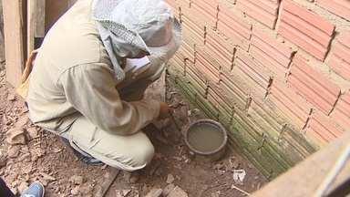 Secretaria da capital tem problemas de estrutura para realizar levantamento sobre dengue - Por falta de estrutura, Secretaria Municipal de Saúde ainda não realizou o Lira.