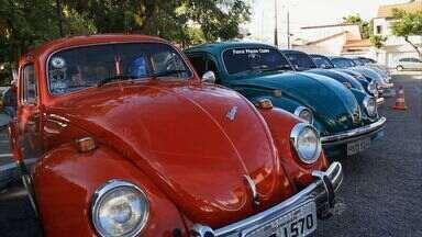 Na Esportiva VM visita exposição feita pelos apaixonados por Fusca - Amantes do carro se reúnem em Fortaleza.