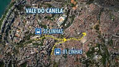 Linhas de ônibus são ampliadas nos circuitos do carnaval - O transporte coletivo vai funcionar 24 horas por dia.