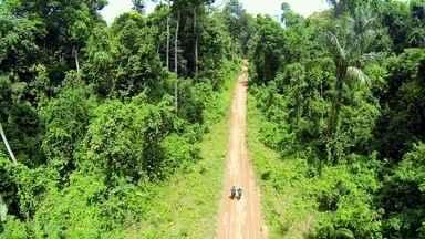 Clayton Conservani e Carol Barcellos encaram a Ultramaratona da Selva Amazônica - Repórteres correm 127km dentro da floresta.