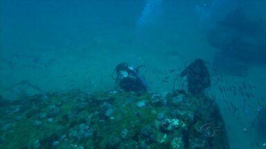 Mergulhadores exploram o oceano em busca de navios que naufragaram no litoral de Alagoas - São pelo menos duas novas embarcações, escondidas a mais de 30 metros de profundidade.