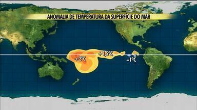Tempo no Campo: Santa Catarina teve maior volume de chuva durante o verão - Assista ao vídeo.