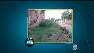 Telespectador reclama de mato que toma conta da rua Haiti no bairro Cidade Nova - Telespectador reclama de mato que toma conta da rua Haiti no bairro Cidade Nova