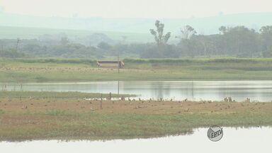 Em meio ao racionamento, Araras faz campanha para reduzir o consumo de água - Em meio ao racionamento, Araras faz campanha para reduzir o consumo de água