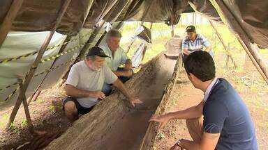 Menino encontra canoa de mais de 400 anos em MG - Estudante de 11 anos descobre barco ao nadar em rio de Andrelândia, no Sul de Minas. Construção é datada de 1610, quando era usada pelos índios tupis-guaranis.