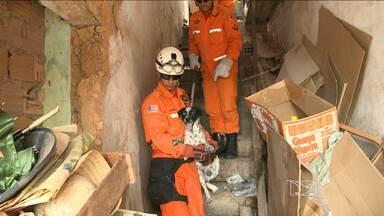 Animais abandonados são resgatados no Centro Histórico de São Luís - Veja na reportagem de Camila Aranha