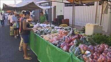 Produtos comuns na páscoa tem aumento de preços - Variedade de preços acontece por causa de regime de chuvas, alta do dólar e especulação.