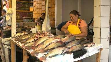Venda de peixes aumenta nesta Semana Santa em Campina Grande - Consumidores estão achando preços salgados.