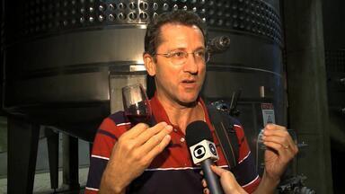 Candiota, RS, oferece visita à vinícola - Assista ao vídeo.