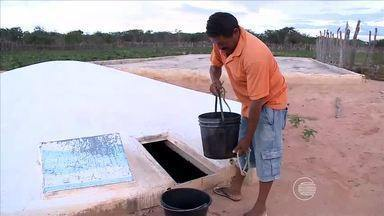Agricultores e criadores de Assunção do Piauí esperam bons resultados ap's últimas chuvas - Agricultores e criadores de Assunção do Piauí esperam bons resultados ap's últimas chuvas