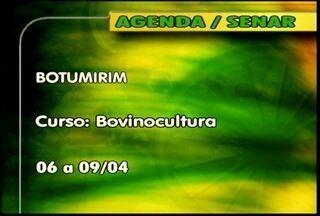 Confira os cursos oferecidos pelo Senar - Em Botumirim tem curso de Bovinocultura, do dia 06 ao dia 09 de abril.