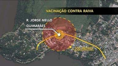 Prefeitura realiza vacinação contra raiva no bairro Belém Novo - Um cavalo morreu da doença na localidade. A imunização é feita de graça até amanhã (8).