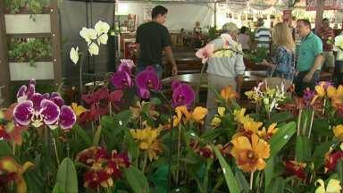 Começou neste sábado a Fest Flores em Cascavel - A feira de flores tem mais de 500 espécies diferentes e vai até o dia 21.