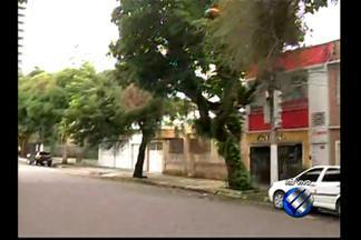 Em Belém, ruas de dois bairros são interditadas para poda de árvores - Serviço será realizada de 8h às 13h, nesta segunda, 20, e terça-feira, 21.