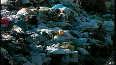 Centro de triagem de lixo deve ser inaugurado essa semana em Uruguaiana - Notícia gera expectativa na comunidade.