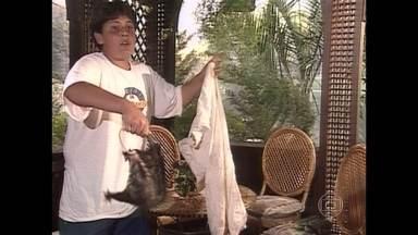 Nos 20 anos de Malhação, confira Falha Nossa especial da trama - Atores se divertem com as confusões nas gravações