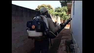 Cresce número de casos de dengue em pequenos municípios de Goiás - Agentes de saúde vão às casas de pessoas com dengue para fazer o bloqueio do perímetro. Além disso, uma campanha de conscientização é realizada nas cidades.