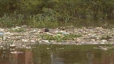 Grande quantidade de lixo é retirada todos os dias do rio Negro - Só no primeiro trimestre deste ano, mais de duas mil toneladas de lixo foram retiradas dos igarapés, volume 44% maior que o registrado no mesmo período de 2014.