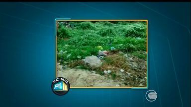 VC no PI TV: telespectador denuncia mato e lixo em rua no bairro em Campo Maior - VC no PI TV: telespectador denuncia mato e lixo em rua no bairro em Campo Maior