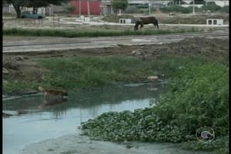 Moradores do Bairro Antônio Cassimiro 1 reclamam de trecho da Estrada da Banana - Eles disse que o local é muito estreito. Nesse trecho, tem uma passarela sem proteção nenhuma.