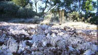 As temperaturas foram baixas hoje em todas as regiões do estado! - Em General Carneiro a mínima chegou a 0.8 graus negativos.